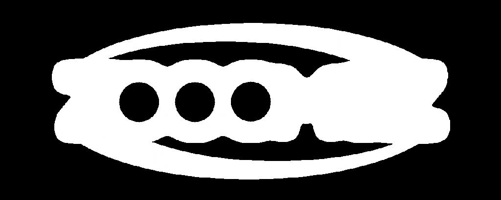 logo-zoomez